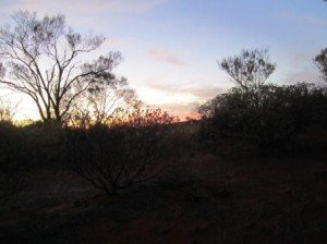 008 The Twins Rest Area-Glendambo 16-11-2014