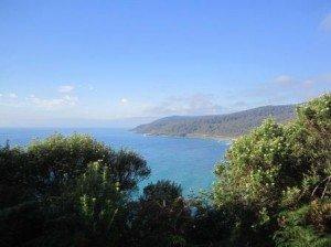 024 Apollo Bay-Torquay 04-12-2014
