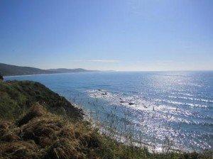 028 Apollo Bay-Torquay 04-12-2014