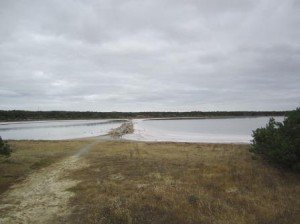 033 Lake Albert-Kingston 26-11-2014